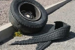 """Danni causati da """"ruota vagante"""" in autostrada: ne risponde il gestore."""
